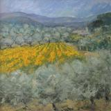 Sunflowers & Olive Groves- SOLD