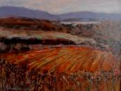 February fields, Donegal- SOLD